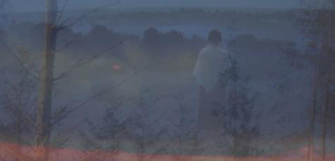 The mist has fallen low.